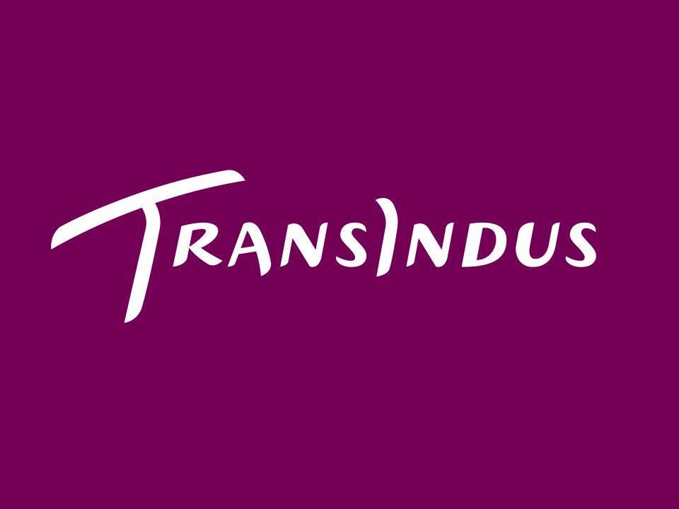 Transindus logo